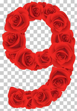 Number Rose Red PNG