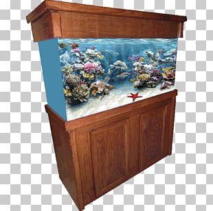 Reef Aquarium Aquarium Furniture Aquarium Lighting Tropical Fish PNG