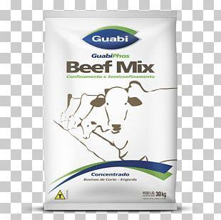 Beef Horses Kilogram Pet Food PNG