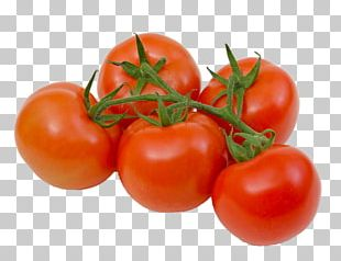 Plum Tomato Bush Tomato Vegetable Food Roma Tomato PNG
