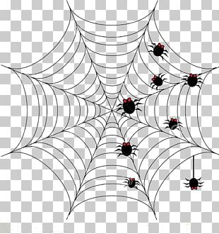 Spider Web Halloween Drawing PNG