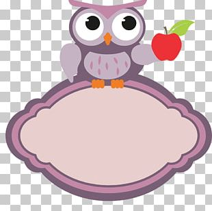 Teachers' Day Education Little Owl Color PNG