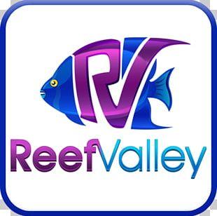 Reef Valley Aquaforest Aquarium Saltwater Fish Seawater PNG