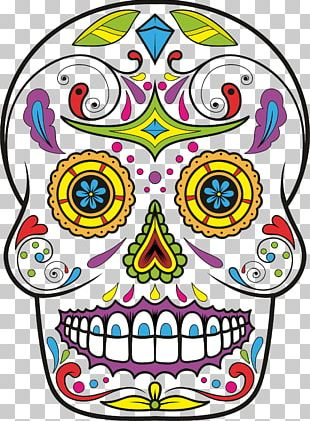 Calavera Skull Day Of The Dead Drawing PNG