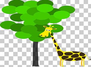 Giraffe Manor Zoo Animals Coloring Book PNG