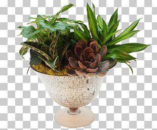Flowerpot Floral Design Artificial Flower Floristry PNG