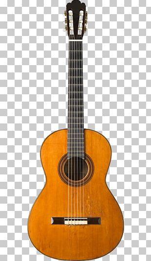 Twelve-string Guitar Acoustic Guitar Acoustic-electric Guitar String Instruments PNG