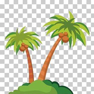 Cartoon Coconut PNG