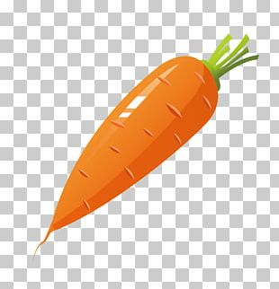 Carrot Cake Vegetable PNG