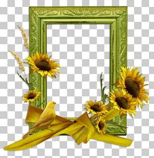 Frames Blog PNG