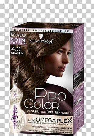 Hair Coloring Schwarzkopf Black Hair Human Hair Color PNG