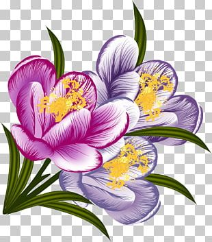 Flower Floral Design Watercolor Painting PNG