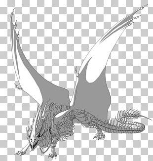 Dragon Bird Of Prey Fauna Beak PNG