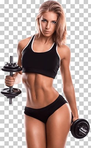 Exercise Equipment Fitness Centre Crunch Physical Fitness PNG