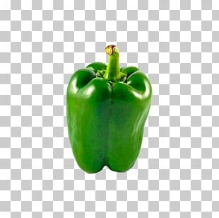 Bell Pepper Chili Pepper Paprika Black Pepper Vegetable PNG