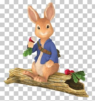 Peter Rabbit Sitting On Tree Trunk PNG