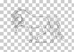 Arabian Horse Line Art Drawing Pony PNG