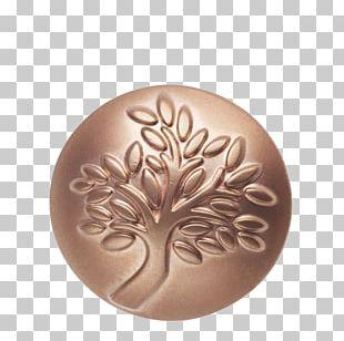 Jewellery Tree Line Bracelet Gold PNG