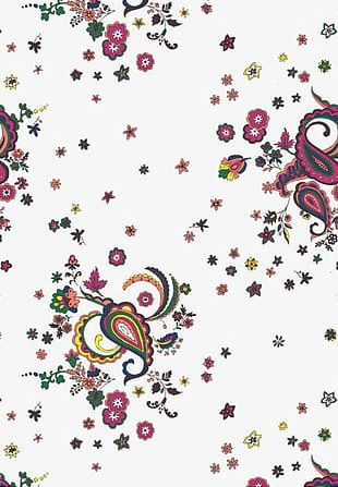 Flowers And Paisley Shading Background PNG