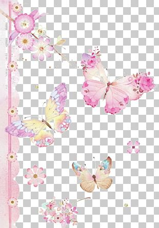 Butterfly House Caterpillar PNG