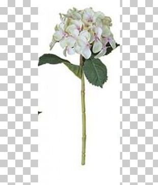 Artificial Flower French Hydrangea Plant Stem PNG