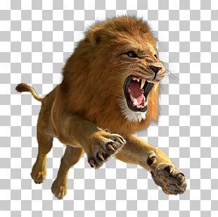 Lion Quest Simulator Tiger 3D Computer Graphics Lion Hunter Forest Escape PNG