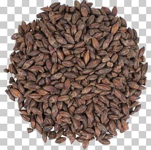 Barley Tea Caffè D'orzo Roasted Grain Drink Malt PNG