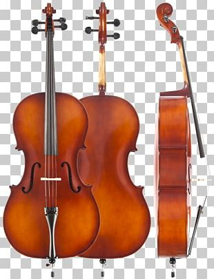 Cello Musical Instruments Violin String Instruments PNG