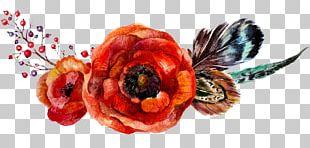 Poppy Flowers Flower Bouquet PNG