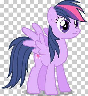 Rainbow Dash Twilight Sparkle Pony Princess Celestia Pinkie Pie PNG