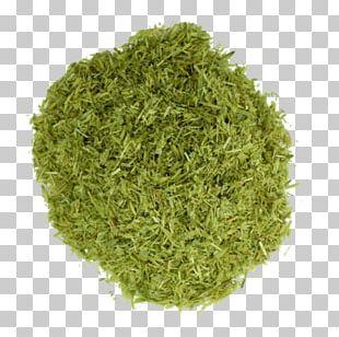 Sencha Matcha Green Tea Powder PNG