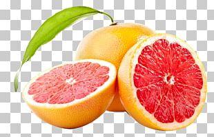 Juice Grapefruit Tangerine Pomelo Lemon PNG