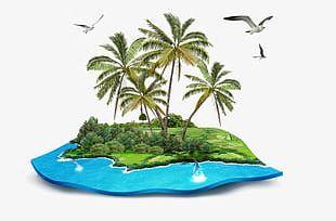 Summer Beach PNG