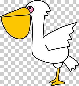 Beak Pelican Line Art PNG