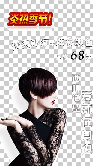 Hair Styling PNG