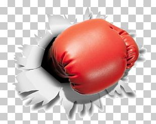 Boxing Glove Punching & Training Bags PNG
