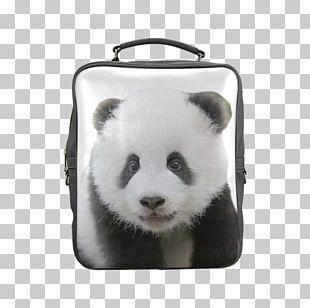 Giant Panda Red Panda Samsung Galaxy S8 Bag Backpack PNG