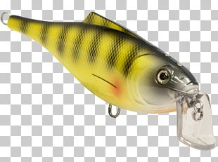 Perch Spoon Lure Osmeriformes Oily Fish PNG