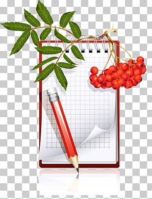 Paper Pen Writing Homework PNG
