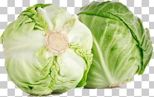 Kale Vegetable Eating Food Cabbage PNG