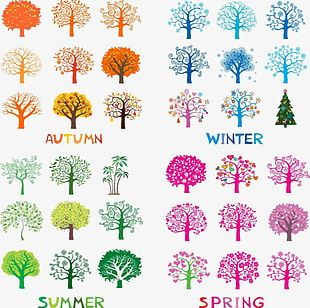 Spring And Summer Autumn And Winter Canopy Pattern PNG