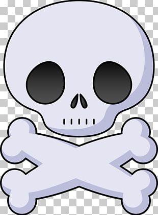 Skull And Bones Skull And Crossbones Human Skull Symbolism PNG