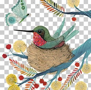 Hummingbird Watercolor Painting Illustration PNG