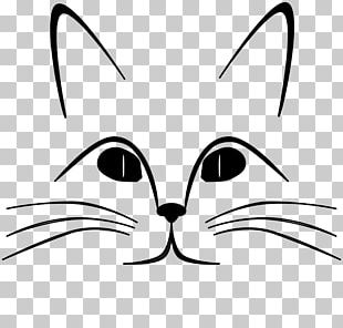 Sphynx Cat Face Kitten Head PNG