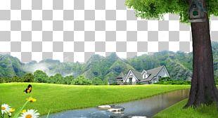 Lawn Landscape Villa PNG