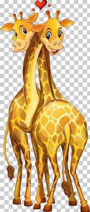 Giraffe Graphics Stock Illustration PNG