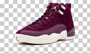 Sports Shoes Air Jordan Retro XII Basketball Shoe PNG