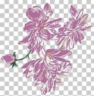 Purple Herbaceous Plant Violet PNG