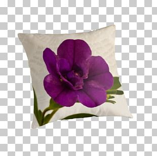 Throw Pillows Cushion Violet Family PNG