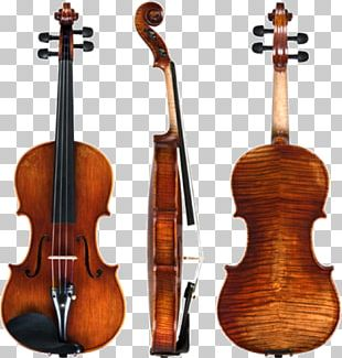 Violin Amati Stradivarius Musical Instruments String Instruments PNG